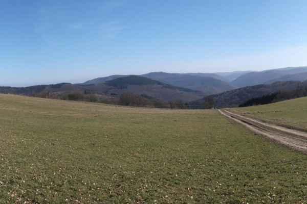 Panoramaweg_008
