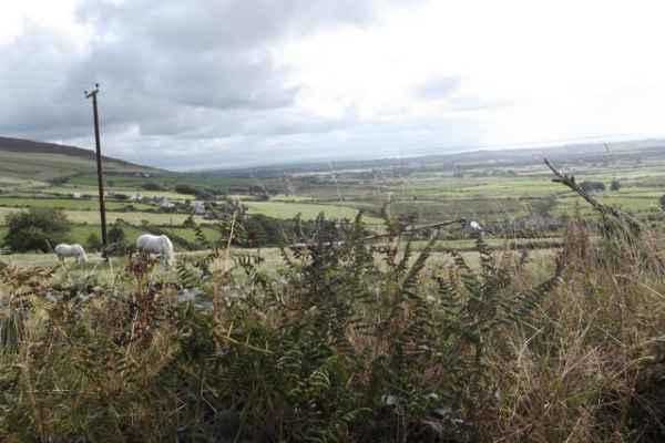 Wales_101