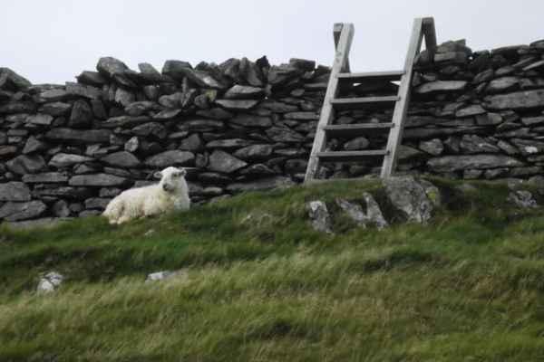 Wales_448